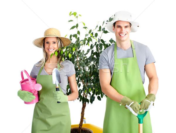 Сток-фото: садоводства · люди · рабочие · цветы · изолированный · белый