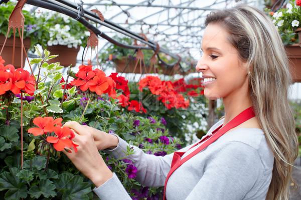 Gardening. Stock photo © Kurhan