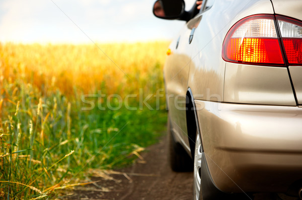 Coche coche nuevo campo mujer naturaleza seguridad Foto stock © Kurhan