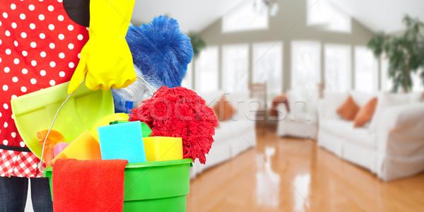 Pokojówka ręce czyszczenia narzędzia domu usługi Zdjęcia stock © Kurhan