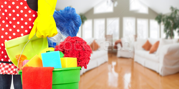 Empregada mãos limpeza ferramentas casa serviço Foto stock © Kurhan