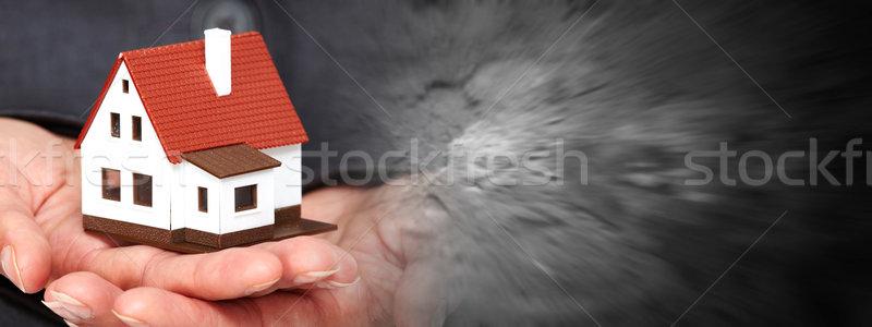 Hand with a little house Stock photo © Kurhan