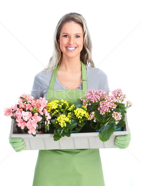 Jardinería mujer flores aislado blanco verde Foto stock © Kurhan