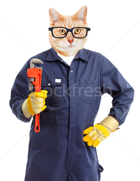 Cat plumber with adjustable wrench. Stock photo © Kurhan