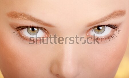 The best woman eyes Stock photo © Kurhan