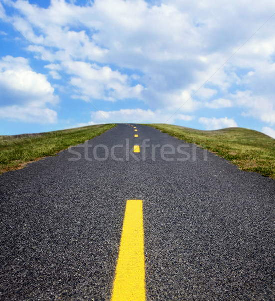 The road. Stock photo © Kurhan