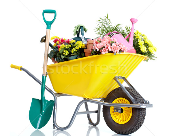 Gardening Stock photo © Kurhan