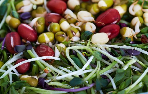 Micro ensalada verde frescos salud Foto stock © Kurhan