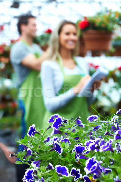 People working in nursery. Stock photo © Kurhan