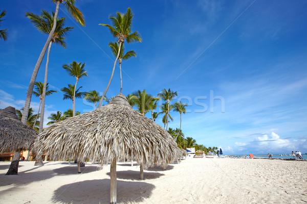 Punta Cana beach. Stock photo © Kurhan