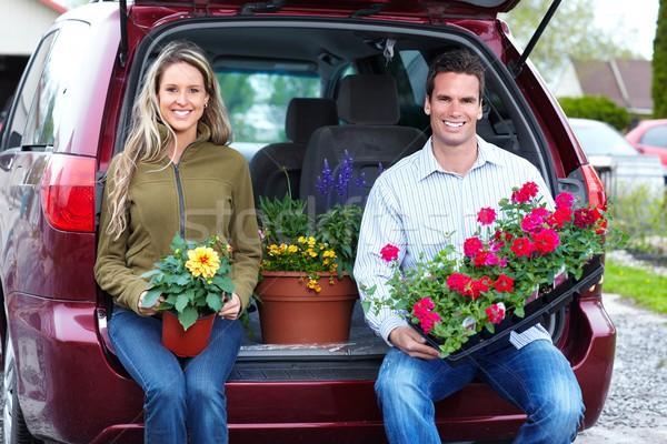 Foto stock: Florista · de · trabajo · flores · invernadero · jardinería · personas