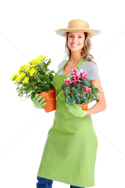 Jardinería mujer trabajador flores aislado blanco Foto stock © Kurhan