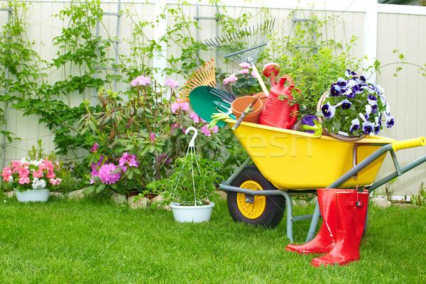 園芸用具 手押し車 庭園 花 花 夏 ストックフォト © Kurhan