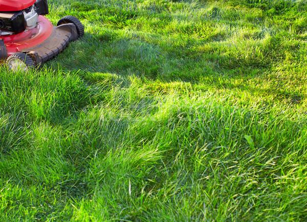 Fűnyíró vág zöld fű munka kert tavasz Stock fotó © Kurhan