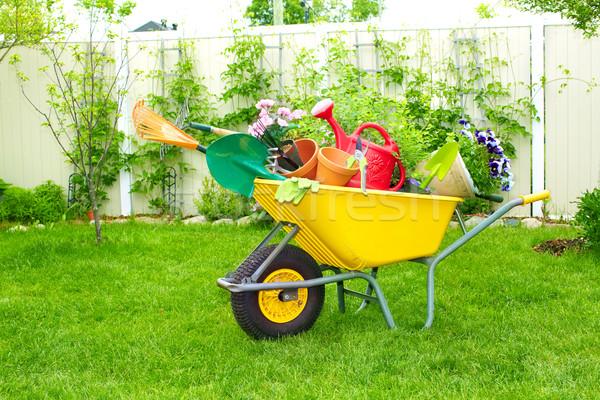 Kerti eszközök talicska kert virág virágok nyár Stock fotó © Kurhan