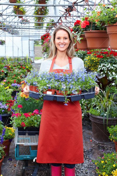 Jardinage jeunes femme souriante fleuriste travail effet de serre Photo stock © Kurhan