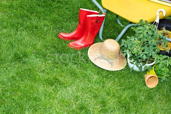 Kerti eszközök talicska kert fű zöld hát Stock fotó © Kurhan