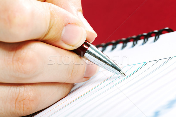 Business woman writing in agenda. Stock photo © Kurhan