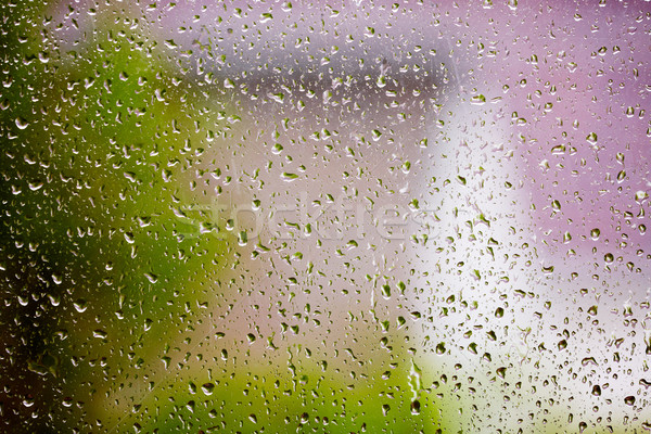 Raindrops on the glass. Stock photo © Kurhan