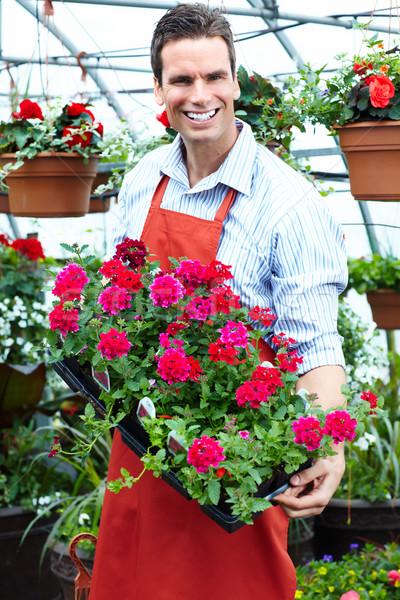 Сток-фото: человека · рабочих · питомник · люди, · работающие · садоводства · весны