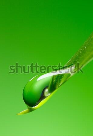 Water  Drop Stock photo © Kurhan
