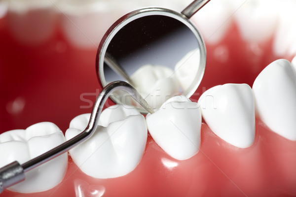 Stock foto: Zähne · gesunden · menschlichen · Zahnarzt · Mund · Spiegel