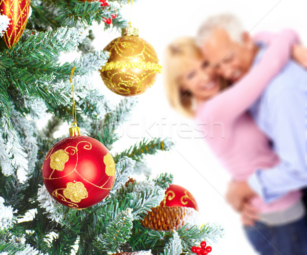 Рождества пожилого пару счастливым рождественская елка изолированный Сток-фото © Kurhan