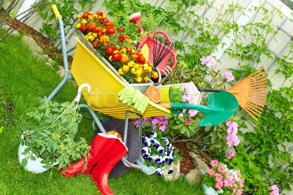 Gardening tools. Stock photo © Kurhan