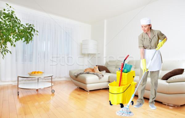 Mucama mujer casa limpieza servicio trabajo Foto stock © Kurhan
