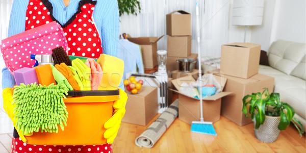 Soubrette mains nettoyage outils maison Ouvrir la Photo stock © Kurhan