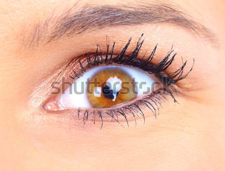 Eye Stock photo © Kurhan