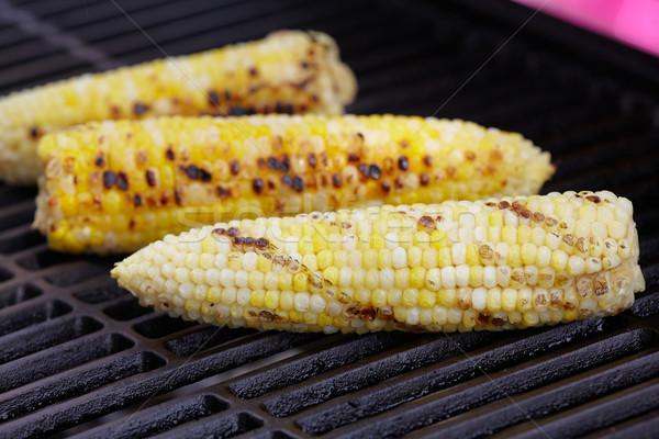 Mais Grill Sommerurlaub Abendessen Kochen Picknick Stock foto © Kurhan