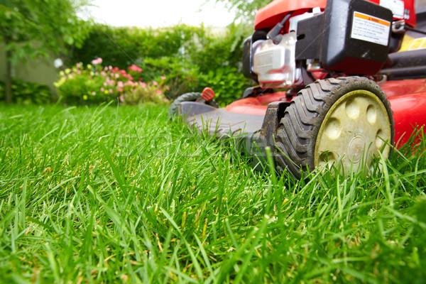 Grama verde grama trabalhar natureza Foto stock © Kurhan