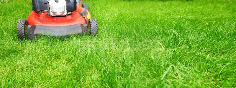 Fűnyíró vág zöld fű udvar természet tájkép Stock fotó © Kurhan