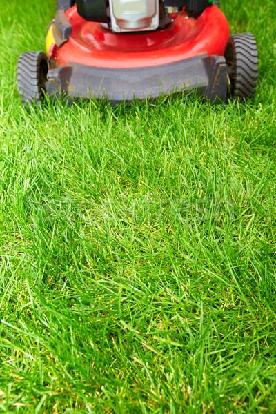 Fűnyíró vág zöld fű fű munka természet Stock fotó © Kurhan