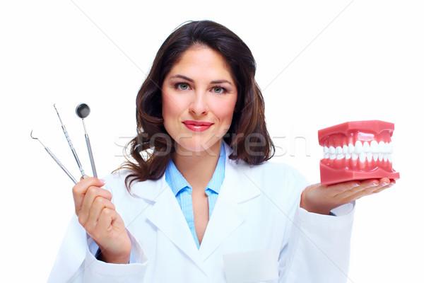 Fogorvos nő fogak modell fogászati egészségügy Stock fotó © Kurhan