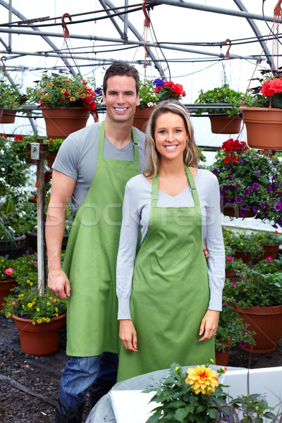 Florist working with flowers in greenhouse. Stock photo © Kurhan
