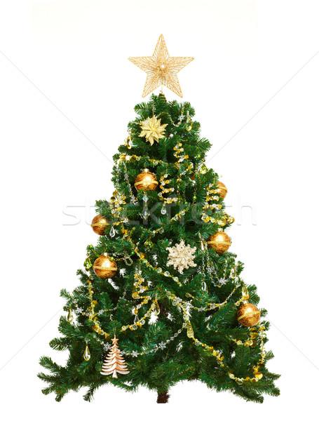 Christmas tree. Stock photo © Kurhan
