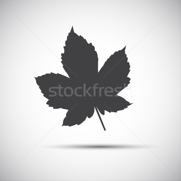Foglia d'acero semplice grigio icona sfondo bandiera Foto d'archivio © kurkalukas