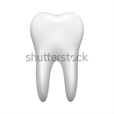 White tooth isolated on white background, stomatology icon, real Stock photo © kurkalukas