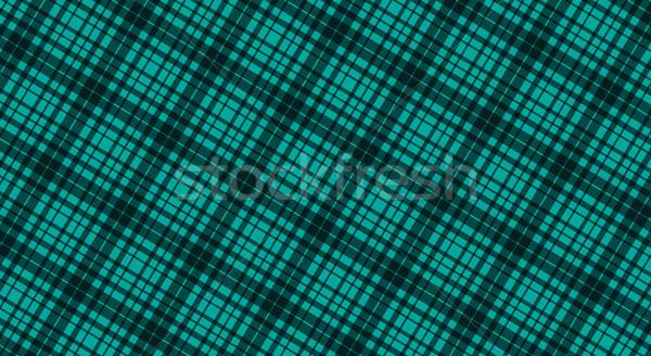 ткань зеленый цвета бесшовный шаблон вектора Сток-фото © kurkalukas