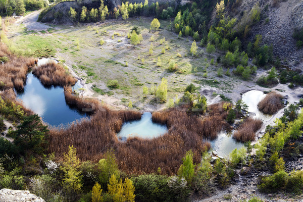 Spring landscape with lakes and colorful trees as amazing still  Stock photo © kurkalukas