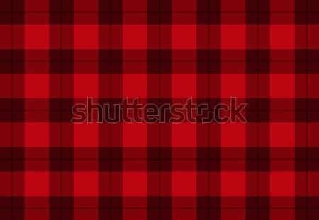 ткань красный цвета вектора шаблон текстуры Сток-фото © kurkalukas