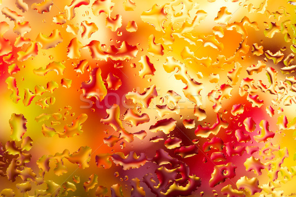 Water drops on glass with colorful background, abstract rainy wa Stock photo © kurkalukas