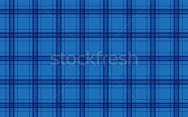 Fabric in blue color, seamless tartan pattern, vector Stock photo © kurkalukas
