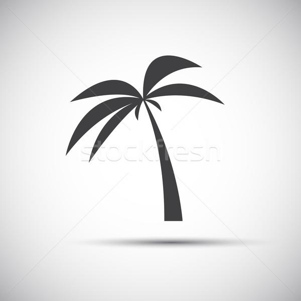 Simple palmier arbre bois forêt soleil Photo stock © kurkalukas