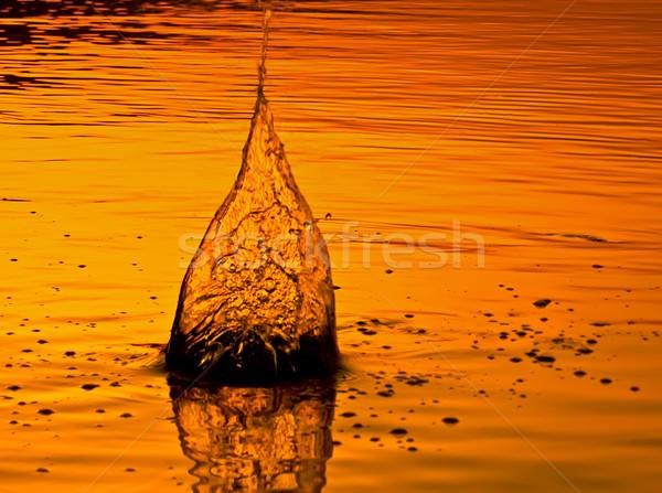 воды огня аннотация свет морем Сток-фото © Kuzeytac