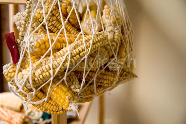 высушите органический чистой продовольствие группа кукурузы Сток-фото © Kuzeytac