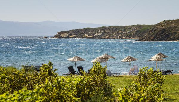 Stro parasols strand druif wijnstokken winderig Stockfoto © Kuzeytac