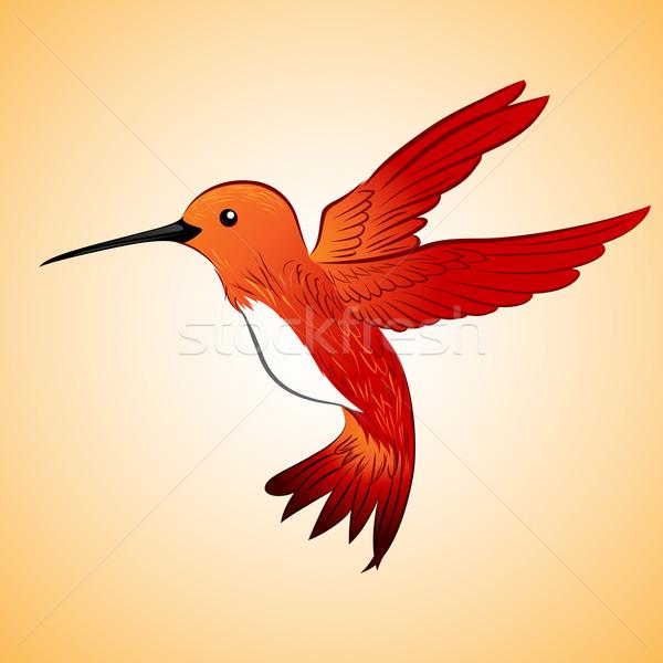 Rosso colibrì battenti illustrazione primavera bellezza Foto d'archivio © kuzzie